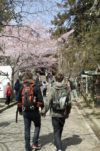 To vår-yre, unge menn vandrer gjennom parken