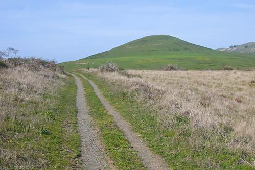 Estero trail by you.