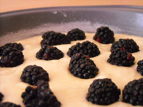 Blackberries, ahoy!