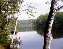 View of Lake Harr from Pasholks 1979