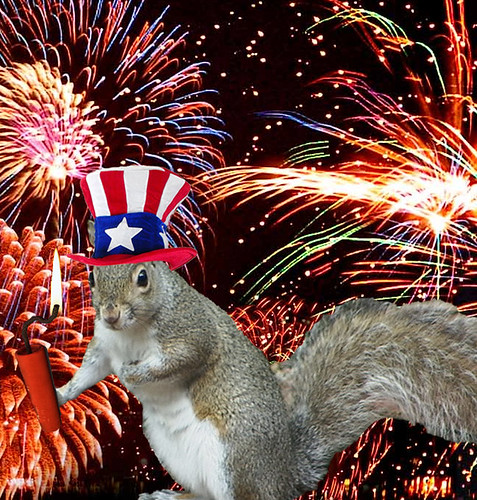 Fourth of July Squirrel