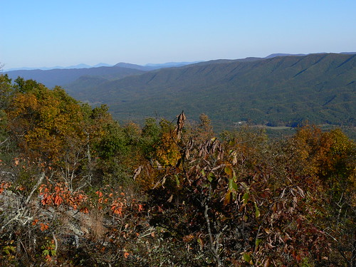 Sinking Creek Mountain - Top -  View Looking Northbound