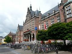 Universitas Groningen