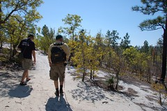 Walking Across the Sandhills
