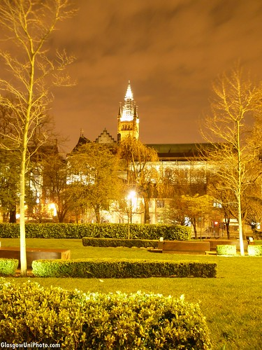 The University at Night