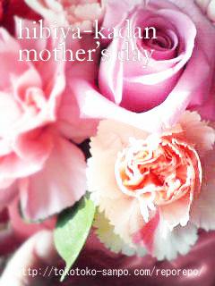 2009母の日 日比谷花壇で贈りもの