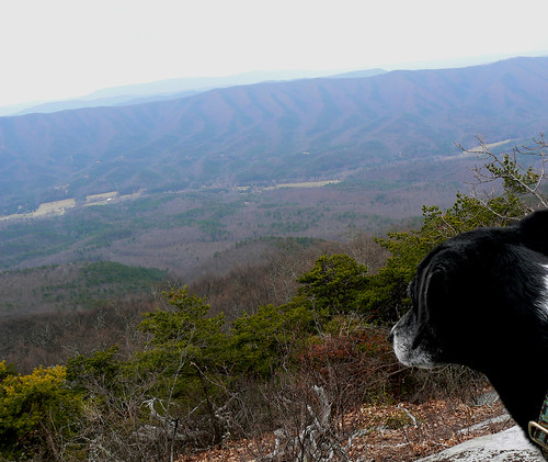 Sinking Creek Mountain - Jimmie and View (Cropped and Adjusted)
