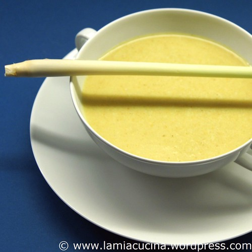 Zitronengras-Curry-suppe 0_2009 06 19_0894