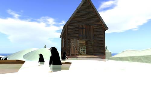 Penguin Rescue_020