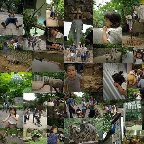 20090614_多摩動物公園