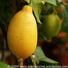 Limonen ?