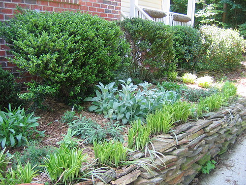 The front bed -- lots of perennials.
