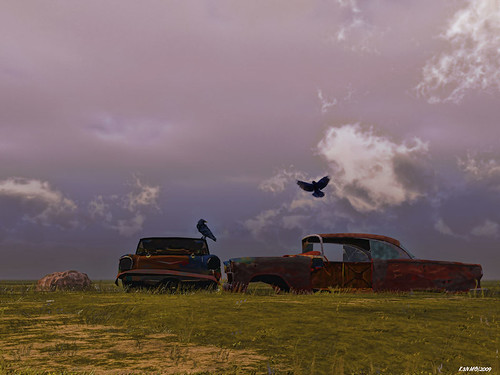 Crows & Chevys