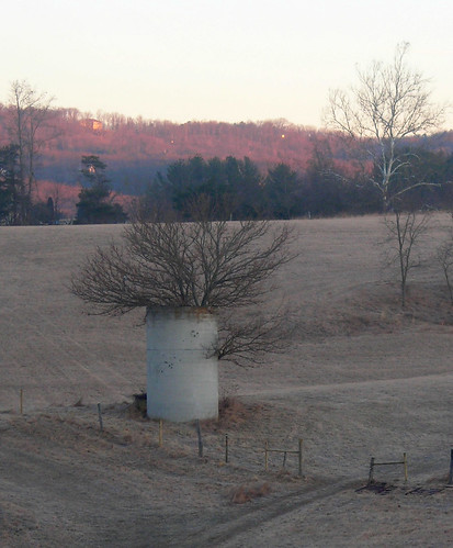 Blacksburg - Silo Tree (Cropped)