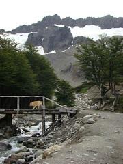 cerro martial - subindo