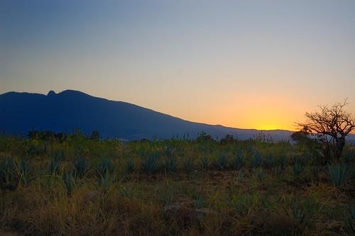 Cerro de Tequila Atardecer