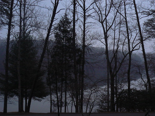 Fairystone State Park - View From Cabin at Dawn