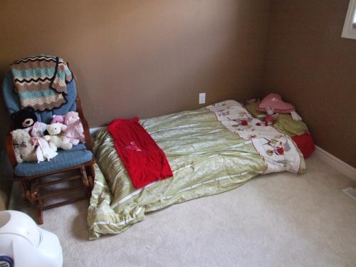 Kitten's room