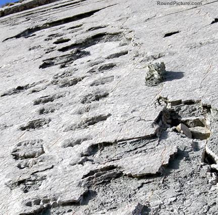 Bolivia - Sucre - Cal Orcko - Footprints