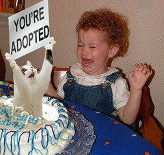 cat pops out of birthday cake with sign that says You're Adopted