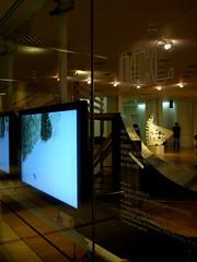 """Light Insight"" Exhibition"