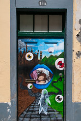 "doors of Funchal • <a style=""font-size:0.8em;"" href=""http://www.flickr.com/photos/58574596@N06/9407021063/"" target=""_blank"">View on Flickr</a>"