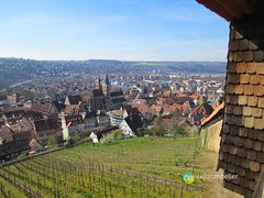 "Burg Esslingen • <a style=""font-size:0.8em;"" href=""http://www.flickr.com/photos/84812658@N00/13564553543/"" target=""_blank"">View on Flickr</a>"