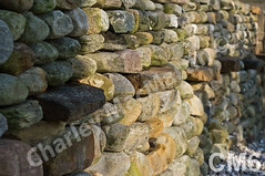 WM Charley MacMartin 6, best-of-elm-terrace, dry laid stone construction, copyright 2014