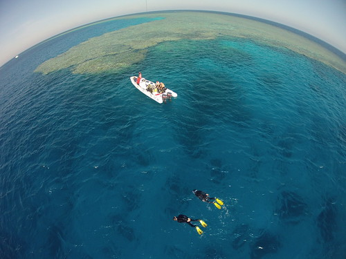 Snorkling from RIB, Fury Shoals, Egypt, uncorrected