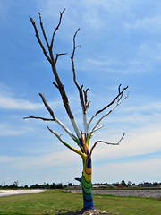 Spirit Tree in Joplin, MO