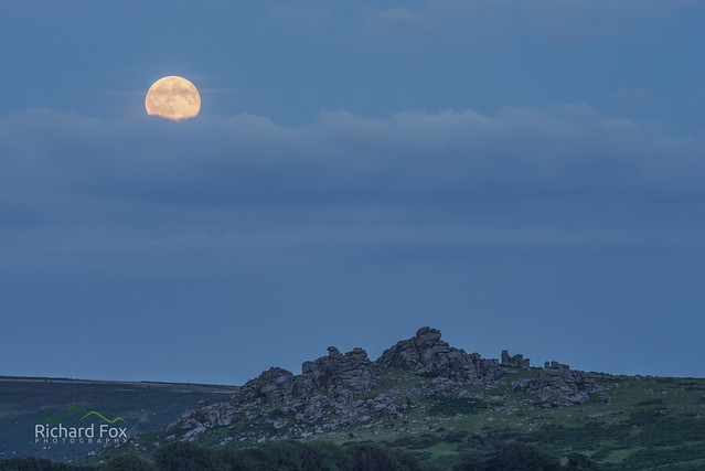 lycanthropic Moon