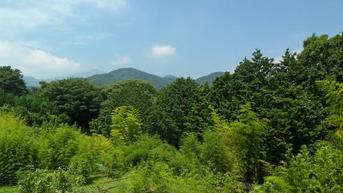 神奈川県立自然環境保全センター(Nature Preservation Center, Kanagawa, Japan)