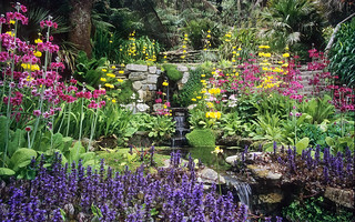 Water in English Gardens (10 of 33) | Stream-s...