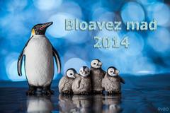 Bloavez mad !!