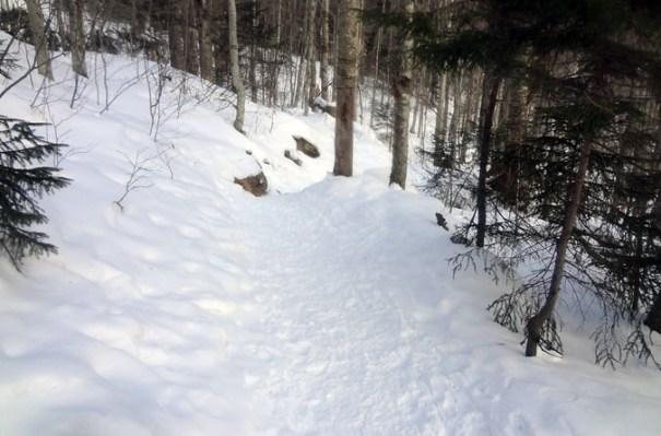 Lonesome Lake Trail