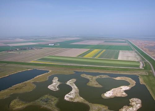Utopia, Texel