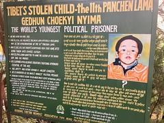 Free the Panchen Lama! Tsuglagkhang Complex, Dharamsala, India