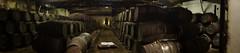 Sandeman's port cellar