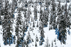 The slope. Kendall Peak Lakes