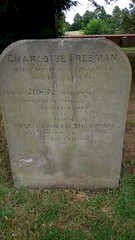 Freeman / Thompson