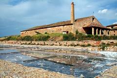 Salinas de Imón / Imón saltworks