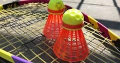 """Der Federball. Die Federbälle. An diesen Federbällen sind zwar keine Feder, sie heißen aber trotzdem so. :-) Sie liegen auf dem Schläger. • <a style=""""font-size:0.8em;"""" href=""""http://www.flickr.com/photos/42554185@N00/33633880490/"""" target=""""_blank"""">View on Flickr</a>"""