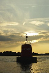 Balise du Golfe du Morbihan