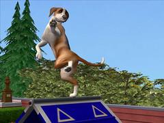Les Sims Histoire d'animaux