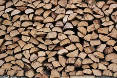 "das Holz • <a style=""font-size:0.8em;"" href=""http://www.flickr.com/photos/42554185@N00/18424642864/"" target=""_blank"">View on Flickr</a>"