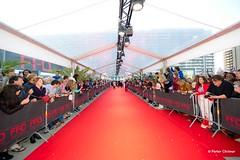 Filmfestival 2014