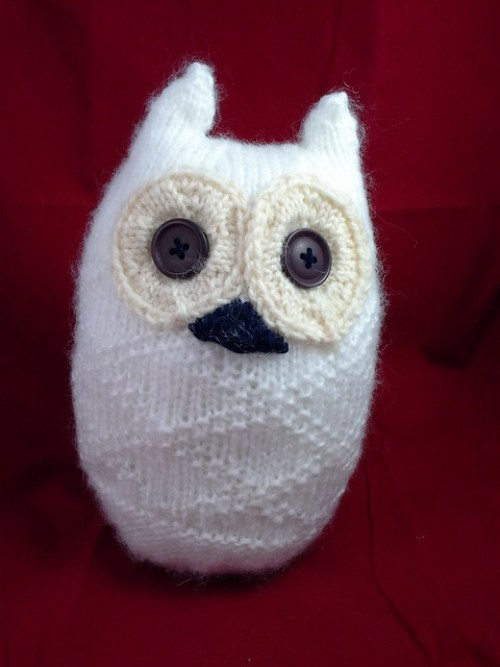 My small snowy owl