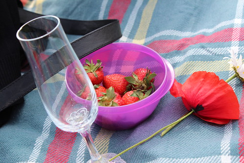 flower strawberry picnic