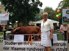 Vlaamse Streekproducten markt