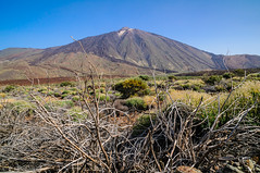 """am Teide • <a style=""""font-size:0.8em;"""" href=""""http://www.flickr.com/photos/58574596@N06/15168870632/"""" target=""""_blank"""">View on Flickr</a>"""